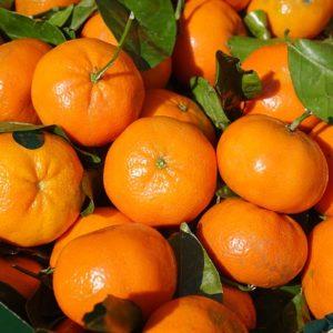 Recipes with mandarin essential oil