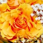 testimonials-rose